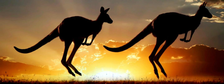 australien istock 000015637459